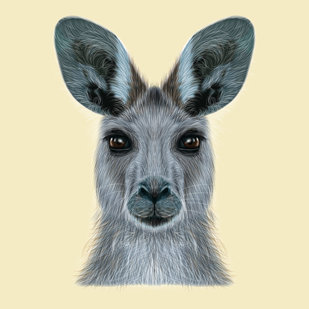 カンガルーのイラスト肖像画。ベージュの背景の野生のオーストラリアの哺乳類のかわいいヘッド。