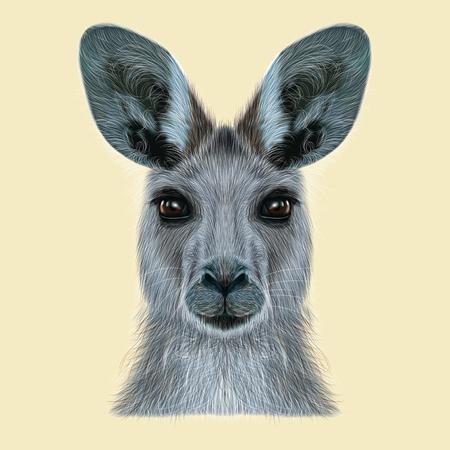 캥거루의 삽화가 초상화. 야생 호주 포유 동물 베이지 색 배경에 귀여운 머리. 스톡 콘텐츠