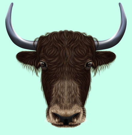 ox eye: Illustrated portrait of Domestic yak. Cute fluffy brown face of Bovid on blue background. Stock Photo