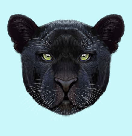 Illustrated portrait of Black panther. Cute fluffy face of Big cat with green eyes on blue background.