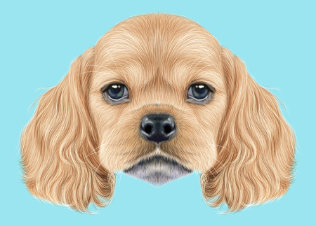 Illustrated portrait of American Cocker Spaniel puppy. Cute fluffy golden face of domestic dog on blue background.
