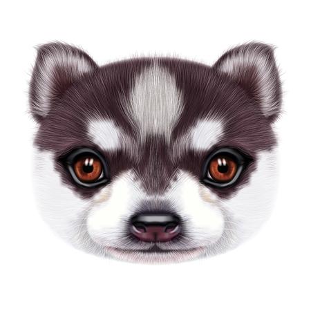 허스키 강아지의 그림 된 초상화입니다. 베개에 인쇄에 대 한 바이 컬러 국내 강아지의 귀여운 머리.