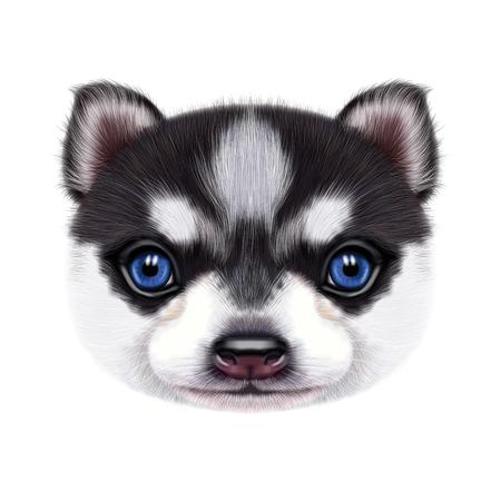 허스키 강아지의 그림 된 초상화입니다.