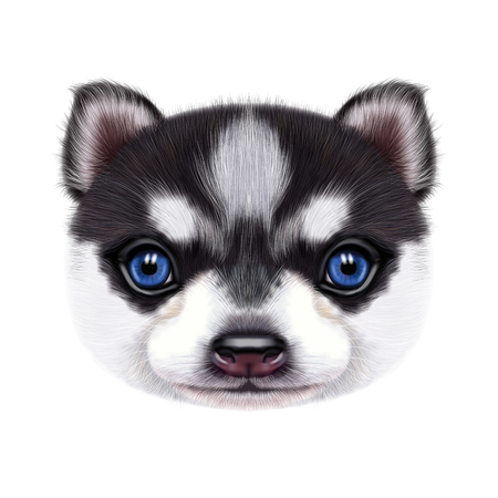 Illustrated portrait of Husky Puppy.