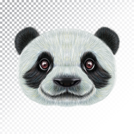 Vector Illustrated face of Panda. 向量圖像