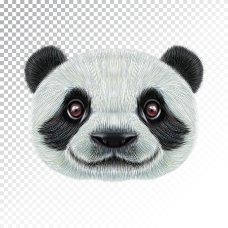 Vector Illustrated face of Panda. Иллюстрация