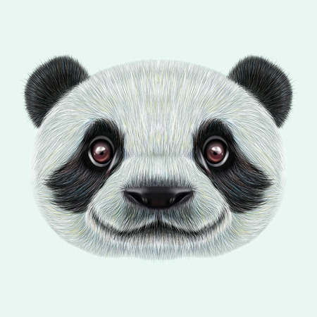 Illustrated face of Panda.