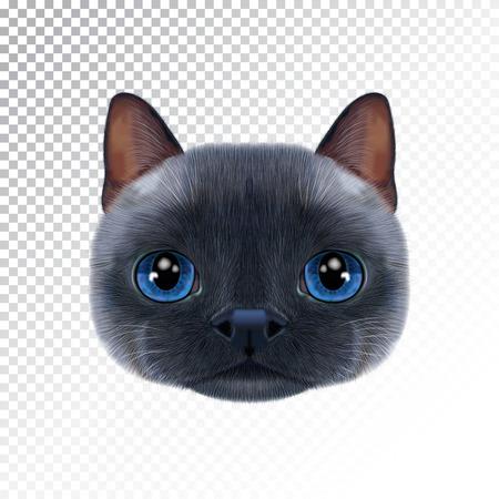 タイ猫のベクトルイラストポートレート。  イラスト・ベクター素材