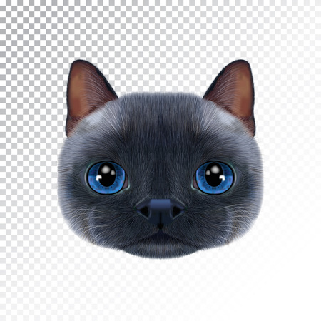 Vector illustration portrait of Thai cat. Ilustração