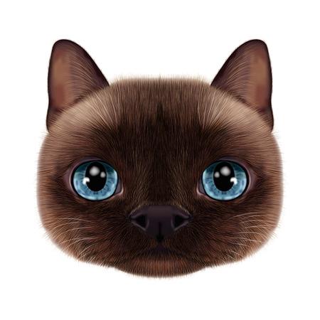 Illustration portrait of Thai cat.