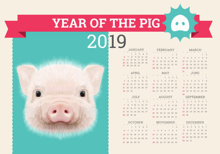 Stylish Pig calendar for 2019. Vector editable template with concept. Symbol of the year in the Chinese calendar. Realistic vector illustration. Ilustração