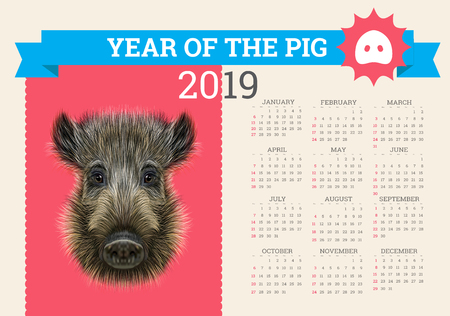 Stylish Pig calendar for 2019. Vector editable template with concept. Symbol of the year in the Chinese calendar. Realistic vector illustration of wild boar. Illustration