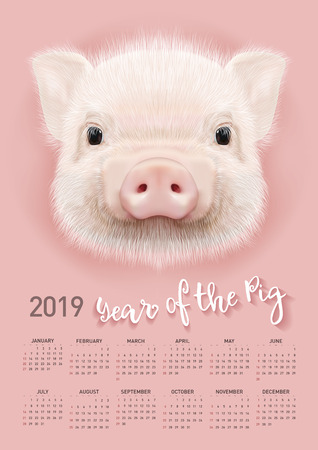 Pig calendar for 2019. Vector editable template with concept. Symbol of the year in the Chinese calendar. Illustration