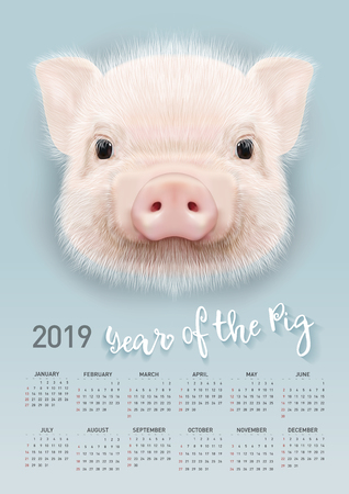 Pig calendar for 2019. Vector editable template with concept. Symbol of the year in the Chinese calendar. Ilustração
