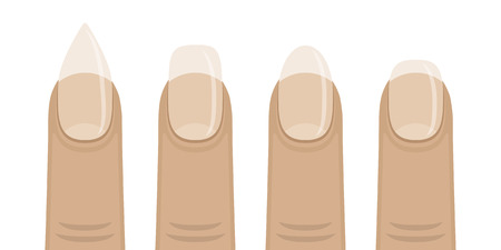 Vector illustration of the kinds of shapes nails. Manicured female nails.