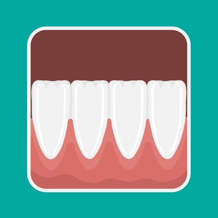 gums: icon incisors and mandibular teeth gums. Illustration