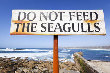 requesting: Close up of a sign by a harbour requesting that you do not feed the seagulls.