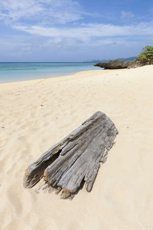 driftwood: Large piece of driftwood on a beautiful white sand beach in Ishigaki Island, Okinawa prefecture, Japan.