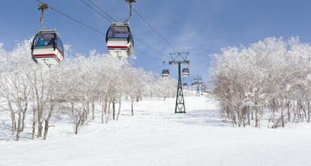 Cable car ski lift passing over frosty birch trees in Niseko, Japan photo