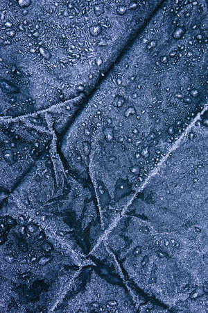 tarpaulin: Close-up of frost covered tarpaulin