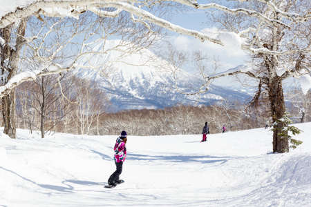 General view of people snowboarding on a tree-lined piste in the Niseko Grand Hirafu ski resort, Hokkaido, Japan on 10th March 2012  Mt Yotei can be seen in the background  photo