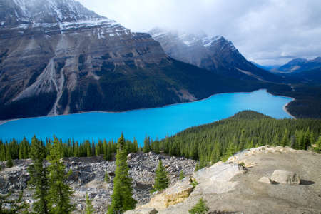 Peyto Lake in Banff National Park, Alberta, Canada.