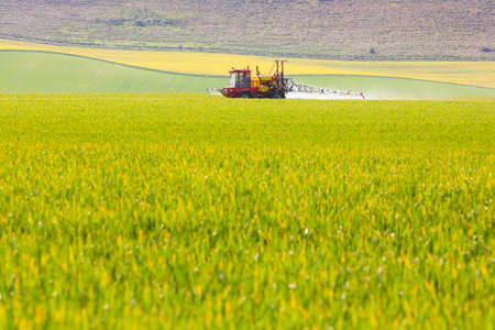 fertilizer: A tractor sprays a field of crops in East Sussex, England, UK