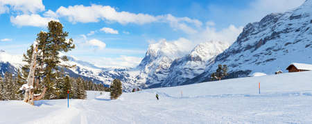 Panoramic view of a ski slope in Grindelwald, Switzerland  photo
