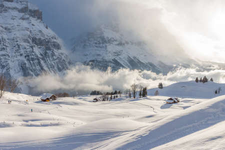 Misty Alpine Valley in Winter photo