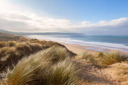 Windswept grass on the sand dunes above Woolacombe beach in North Devon, England 스톡 콘텐츠