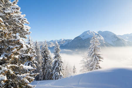 gets: Winter view of snow covered trees and mountains from Les Gets in the Portes du Soleil ski area, France.