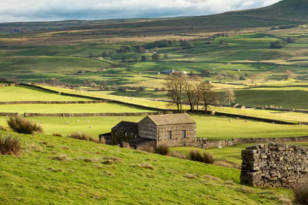 Yorkshire Dales: Landscape in the Yorkshire Dales near Hawes in Wensleydale, England. Stock Photo