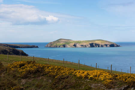 ynys: Cardigan Island, an uninhabited island lying north of Cardigan, Ceredigion, Wales Stock Photo