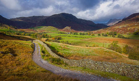 An undulating track winding through farmland in Little Langdale in the Lake District, England.