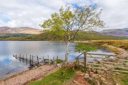Shoreline of Ennerdale Water, a lake in Cumbria, England, UK