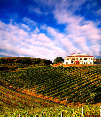 Italian vineyard at sunset with Italian villa on the hill photo