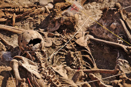common target: In 1936, just at the beginning of the Spanish Civil War, dozens of non-fascist Citizens Were Carried from Burgos to mount Estepar. Over there, They Were shot by a platoon of Francos army and buried in a mass grave Until 2014-2015.
