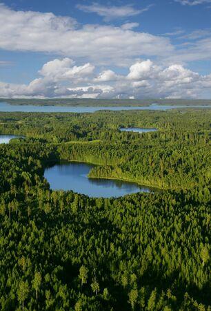 woods lake: Veduta aerea di foreste e laghi con sfondo blu del cielo e nuvole bianche