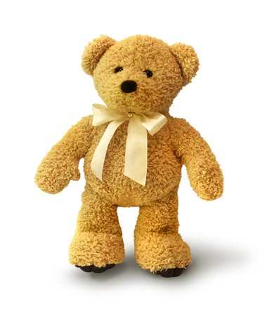 stuffed animals: Cute teddy bear walking on white background isolated