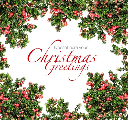Red berries Christmas garland border isolated on white background Standard-Bild