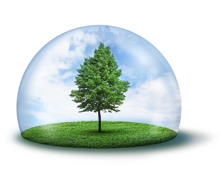 Green tree and grass in glass cupola, environment concept