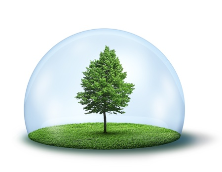 fresh air: Green tree and grass in glass cupola, environment concept