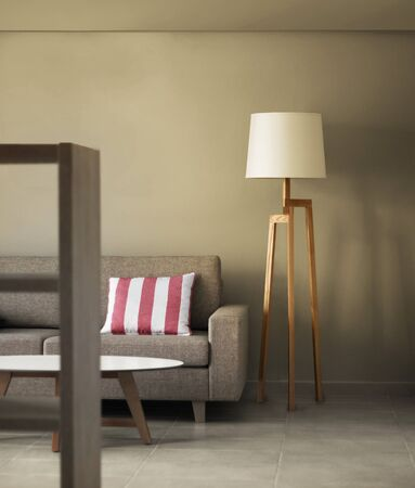 Contemporary modern home living room decoration concept