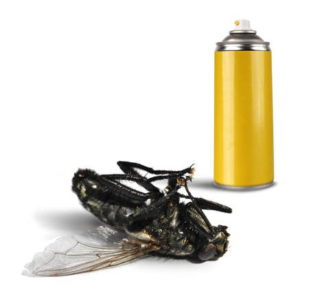 Insecticide spray bottle can and dead fly on white background isolated Foto de archivo