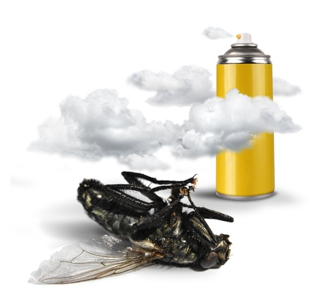 debugging: Spray bottle insecticide clouds and dead fly on white background isolated Stock Photo