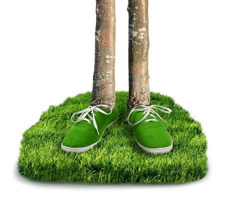 green footprint: Green carbon footprint environmental concept, shoes with trees isolated Stock Photo