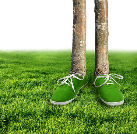 carbon footprint: Green carbon footprint environmental concept, shoes growing trees