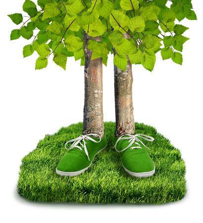 고립 된 신발 녹색 탄소 발자국 환경 개념, 나무 스톡 콘텐츠