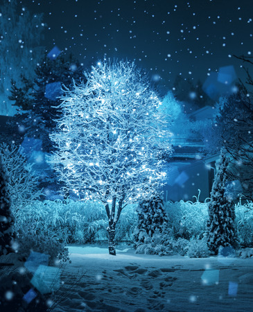 Illuminated tree decoration in Christmas fantasy winter garden snowfall