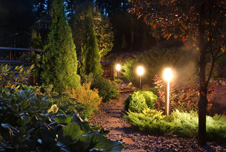 home garden: Illuminated home garden path patio lights and plants in evening dusk